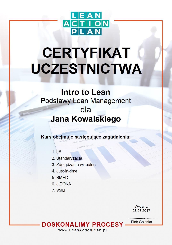 Certyfikat Lean Action Plan
